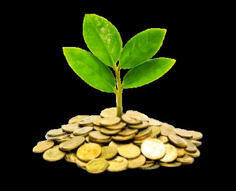 Micro Business Loan