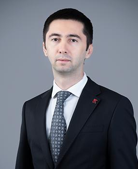 Emin A. Mammadov