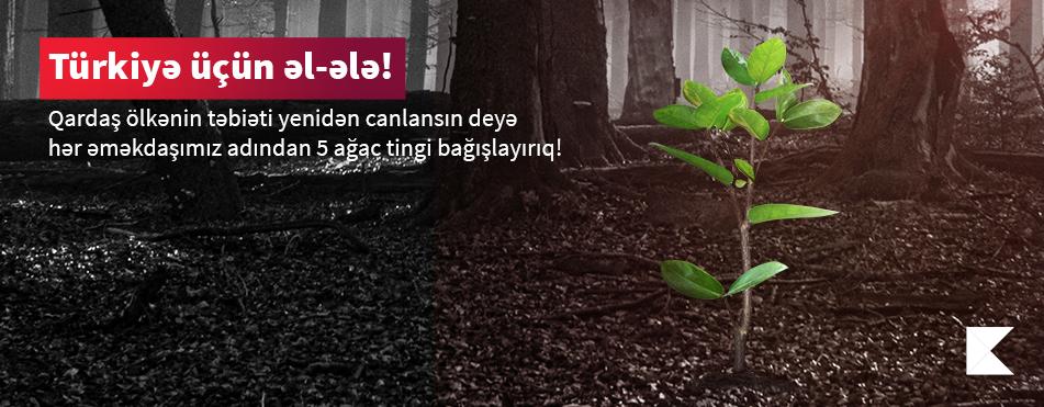 Kapital Bank оказал поддержку Турции для восстановления лесов